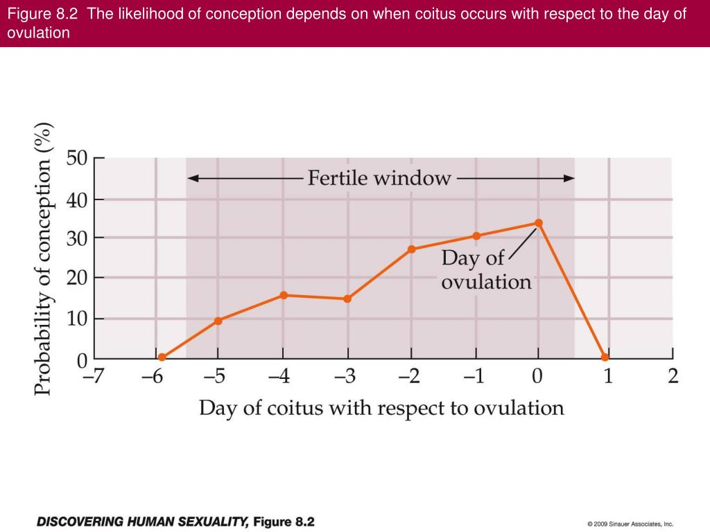Figure 8.2  The likelihood of conception depends on when coitus occurs with respect to the day of ovulation
