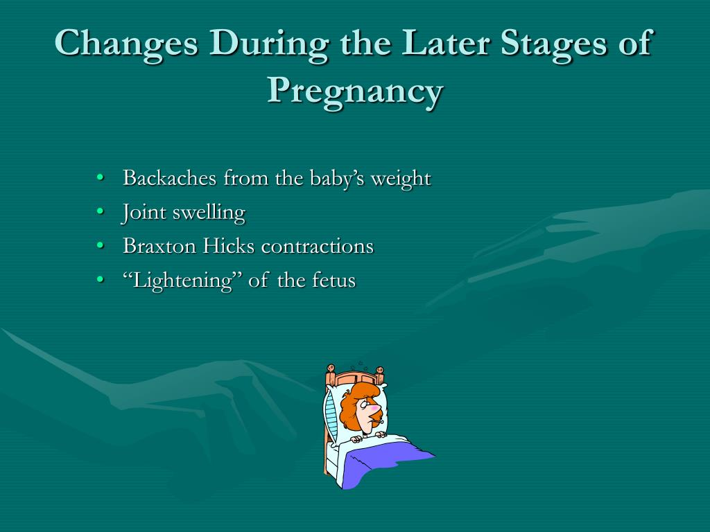 Changes During the Later Stages of Pregnancy