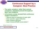 continuous support by a caregiver best practice