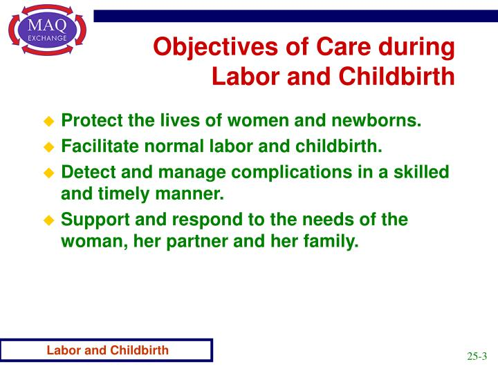 Objectives of care during labor and childbirth