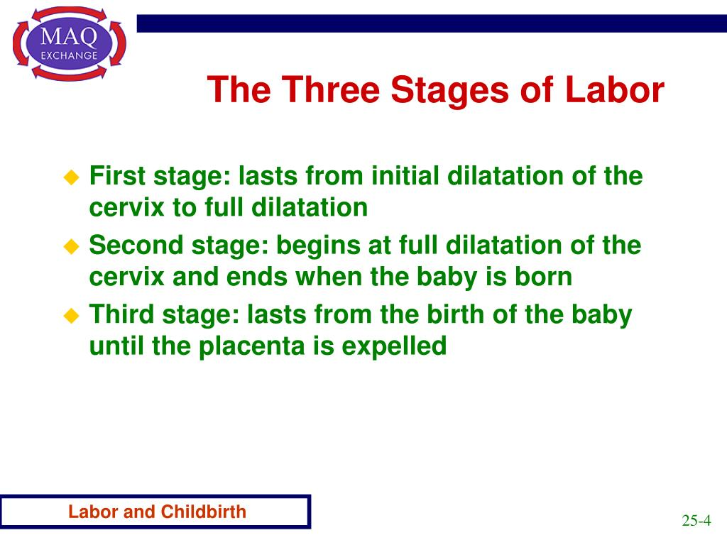 The Three Stages of Labor