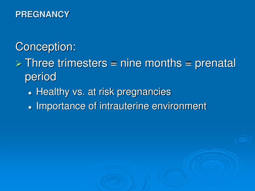 pregnancy l.