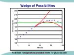 wedge of possibilities