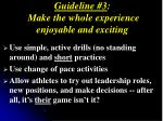 guideline 3 make the whole experience enjoyable and exciting1