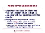 micro level explanations