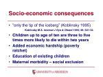 socio economic consequences