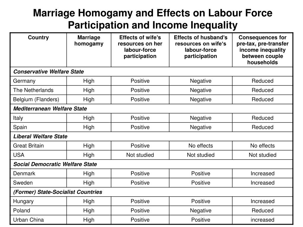 Marriage Homogamy and Effects on Labour Force Participation and Income Inequality