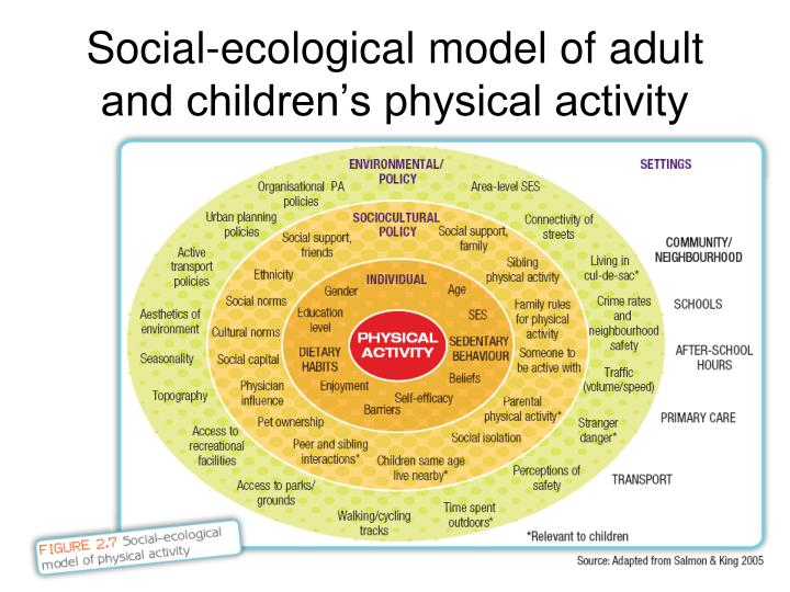 factors influencing participation in physical activity physical education essay 292 \\\\\ focus area c—sport and physical activity in  gender, socioeconomic status or education, have  access ensure participation sport and physical .