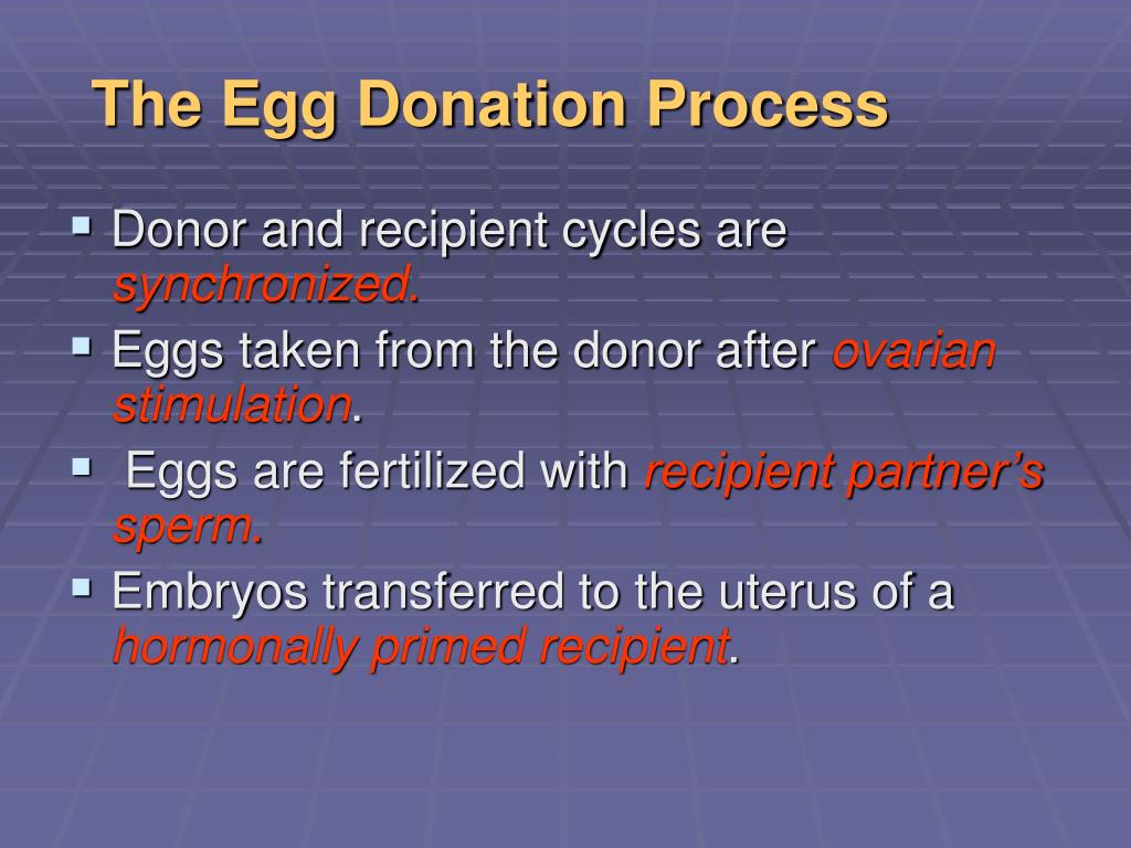 The Egg Donation Process