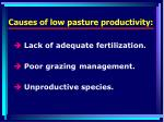 causes of low pasture productivity