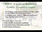 why a study on barriers to fertility for married couples
