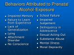behaviors attributed to prenatal alcohol exposure