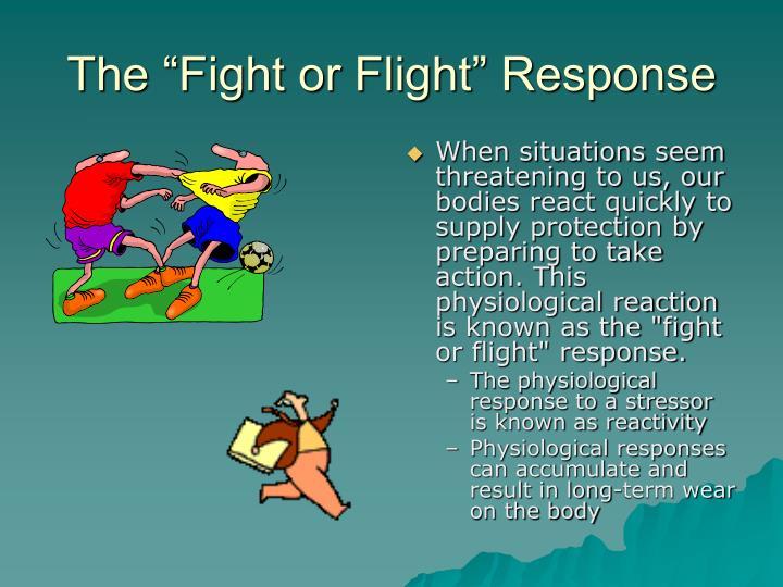 The fight or flight response