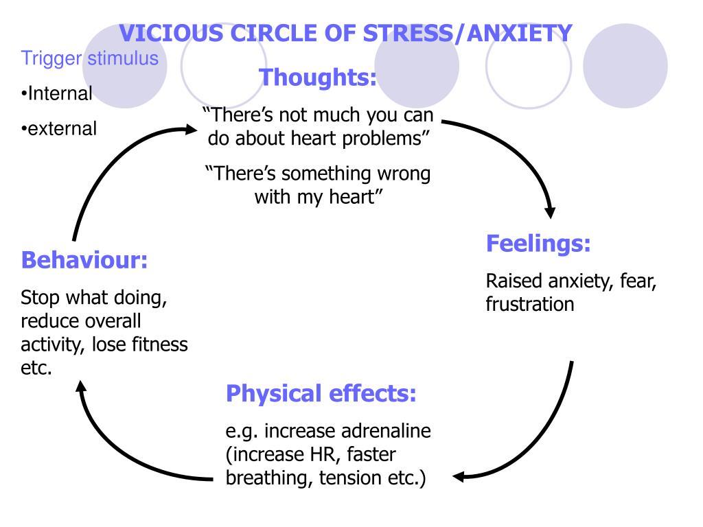 VICIOUS CIRCLE OF STRESS/ANXIETY