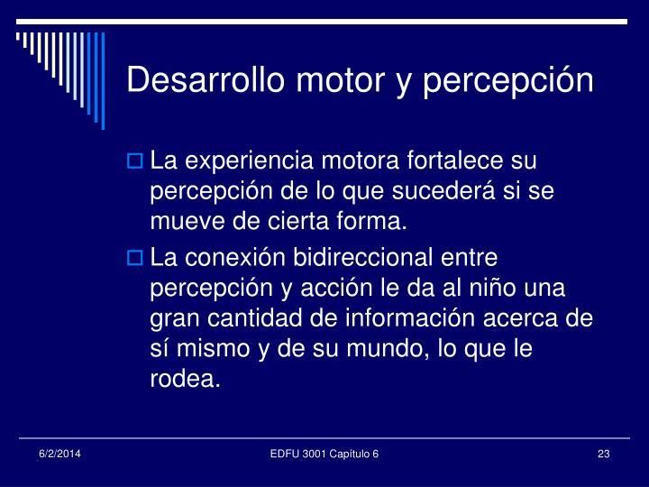 Desarrollo motor y percepción