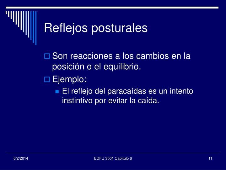Reflejos posturales