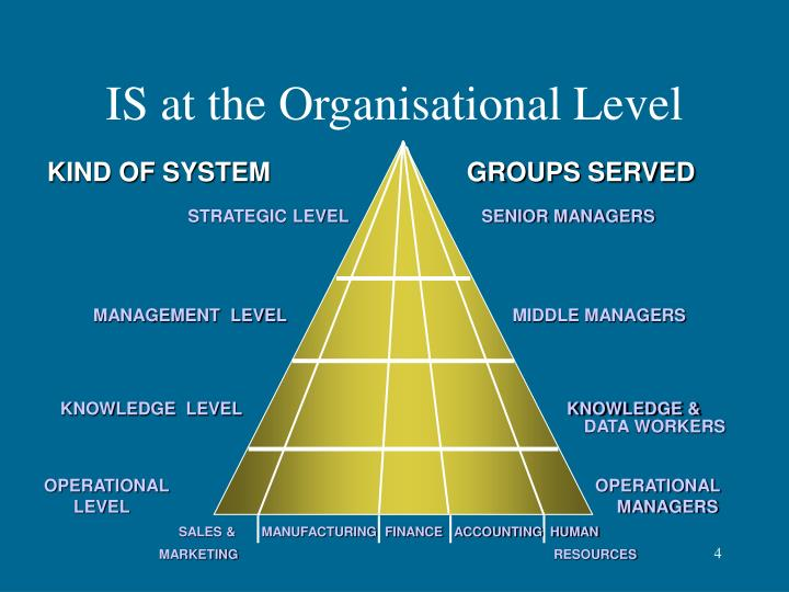 IS at the Organisational Level