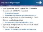 project guiding principles