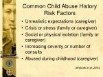 common child abuse history risk factors58