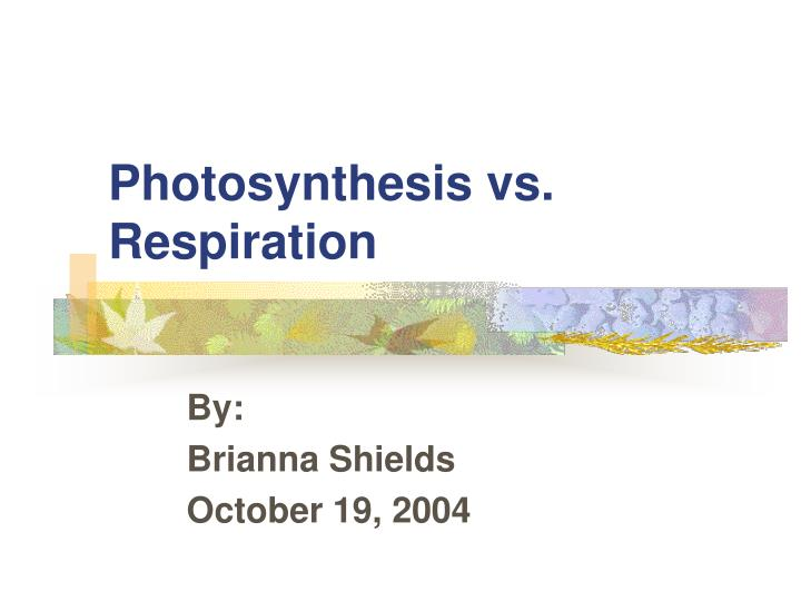 photosynthesis vs respiration n.