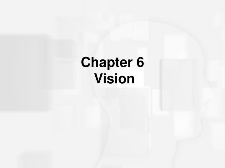 chapter 6 vision n.