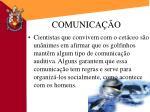 comunica o1