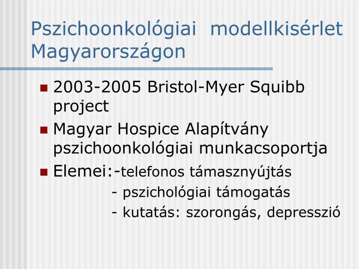Pszichoonkológiai  modellkisérlet Magyarországon