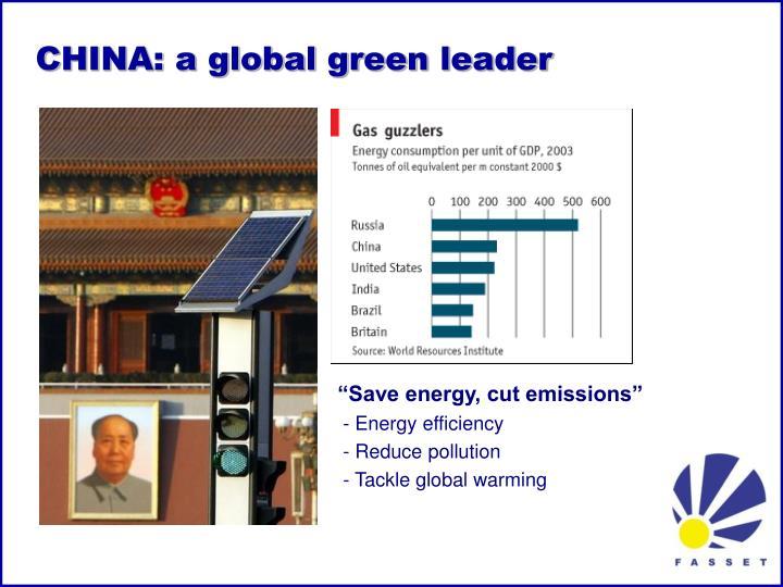 CHINA: a global green leader