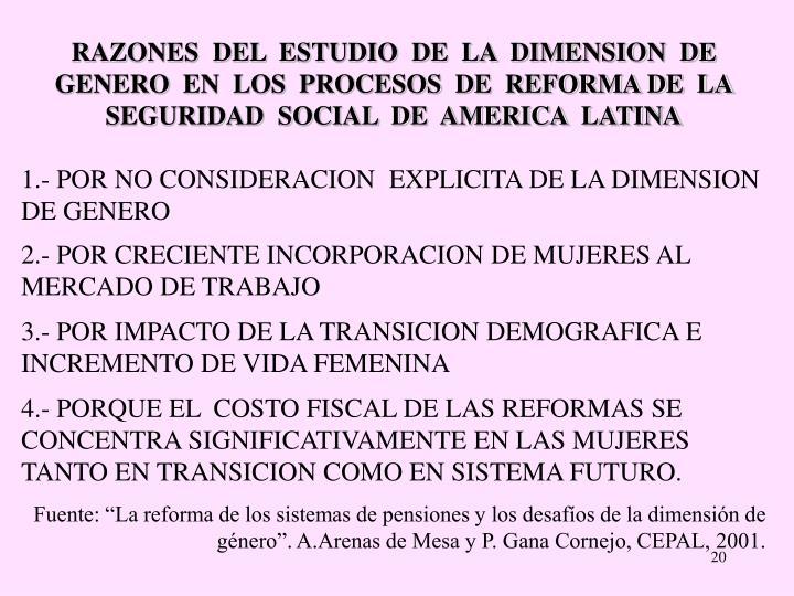 RAZONES  DEL  ESTUDIO  DE  LA  DIMENSION  DE  GENERO