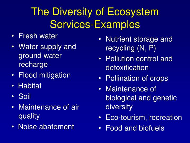 The diversity of ecosystem services examples