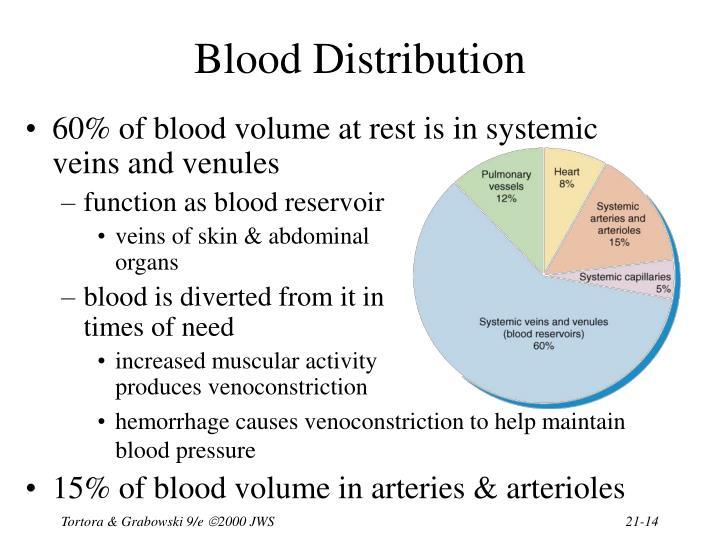 Blood Distribution