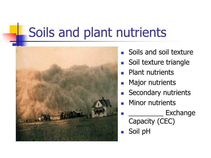 soils and plant nutrients n.