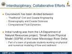 interdisciplinary collaborative efforts