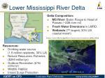lower mississippi river delta