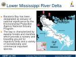 lower mississippi river delta18