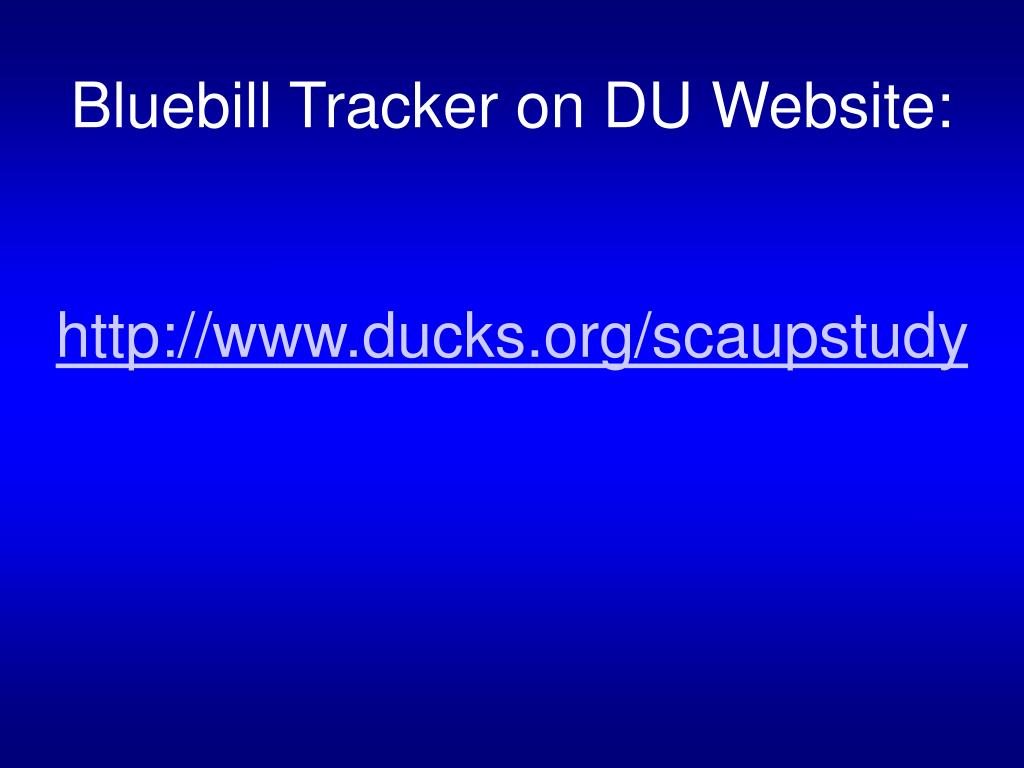 Bluebill Tracker on DU Website: