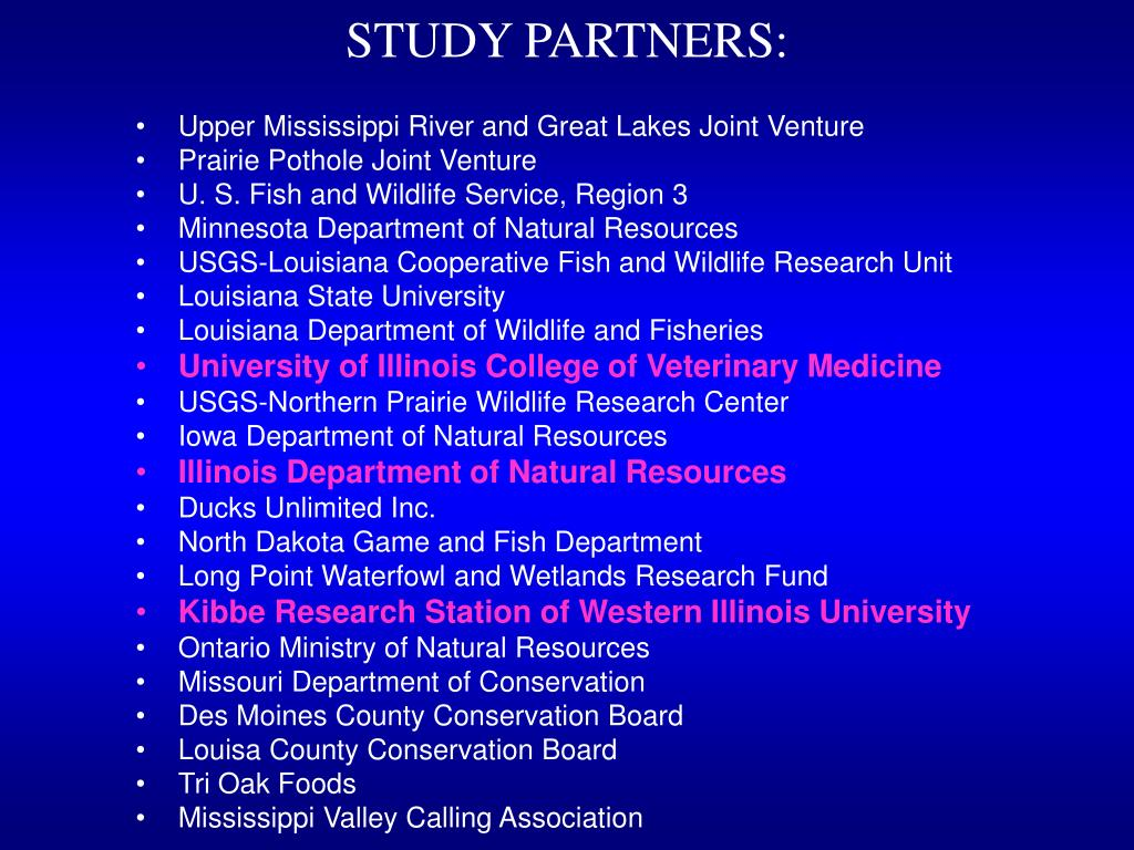 STUDY PARTNERS: