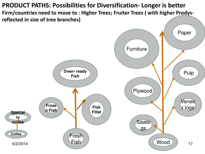 PRODUCT PATHS: Possibilities for Diversification- Longer is better
