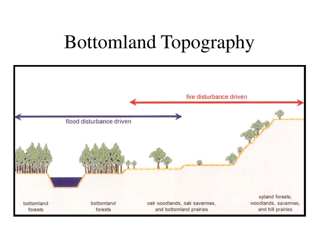 Bottomland Topography
