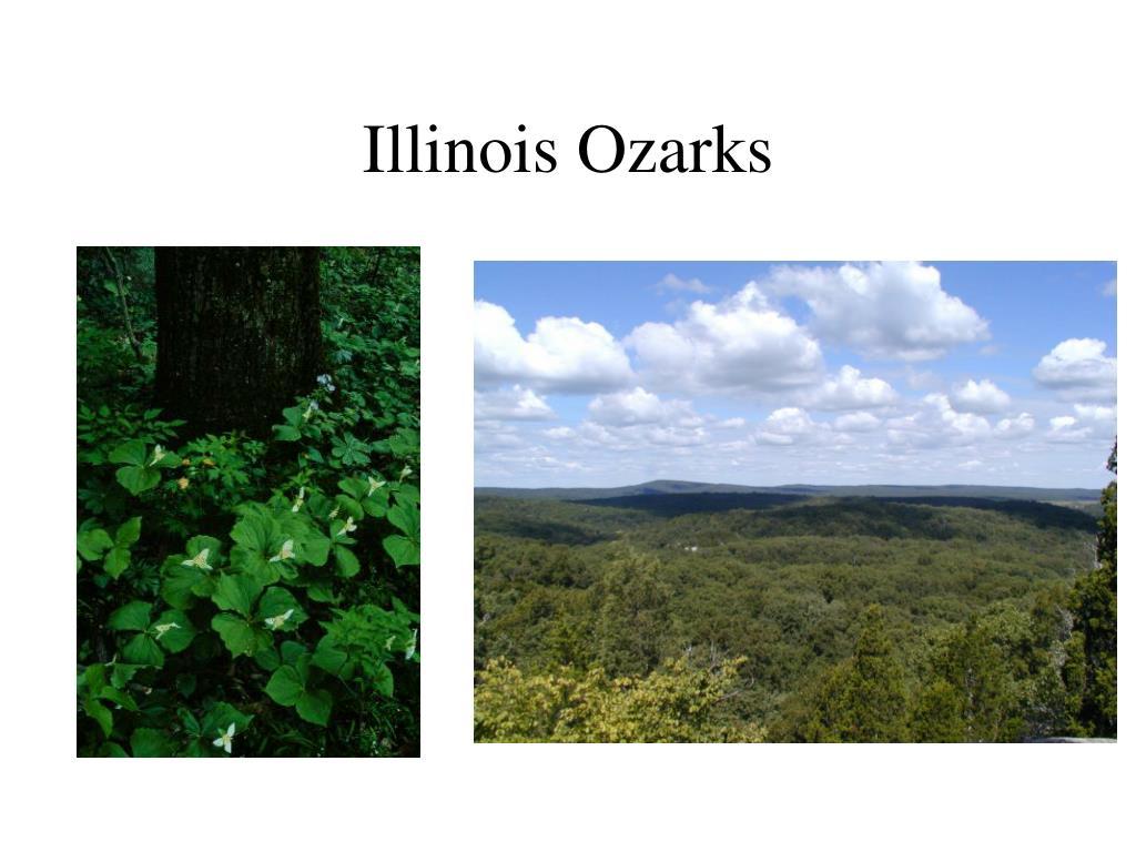 Illinois Ozarks