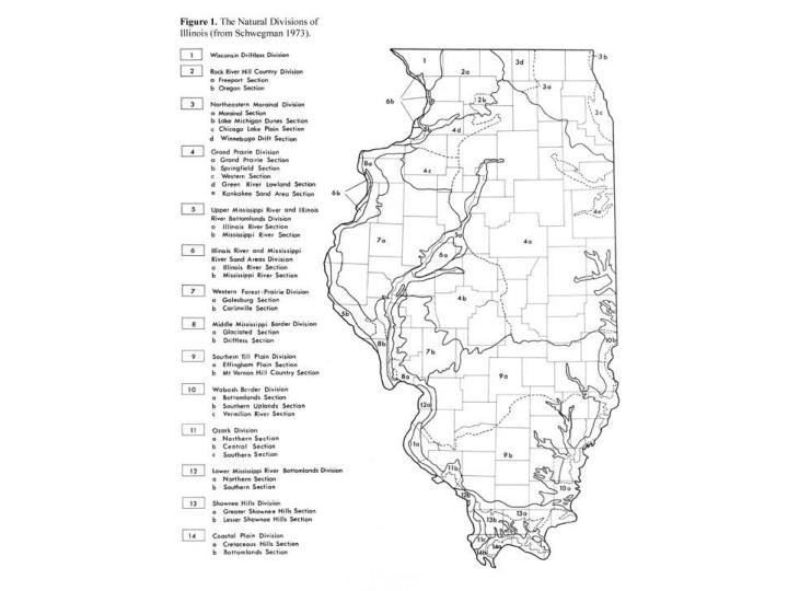 Conclude plant divisions of illinois powerpoint for april 23