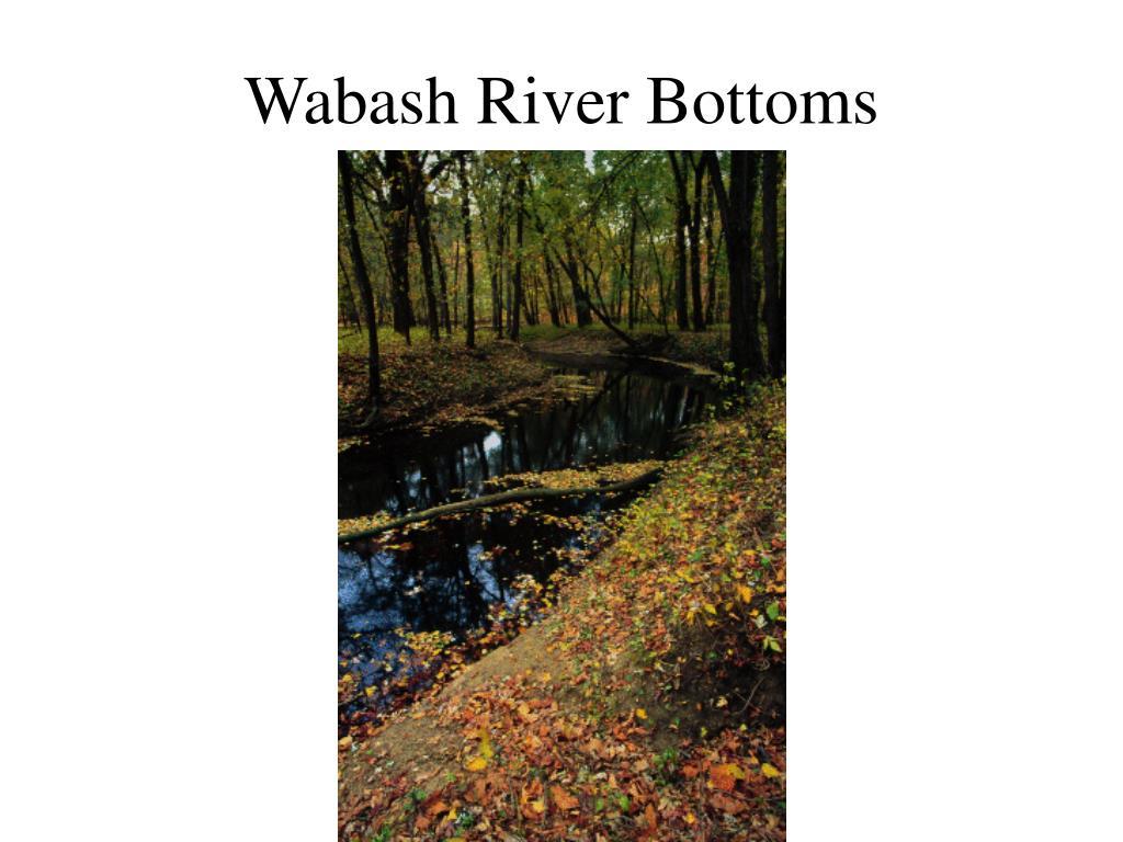 Wabash River Bottoms