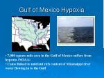 gulf of mexico hypoxia
