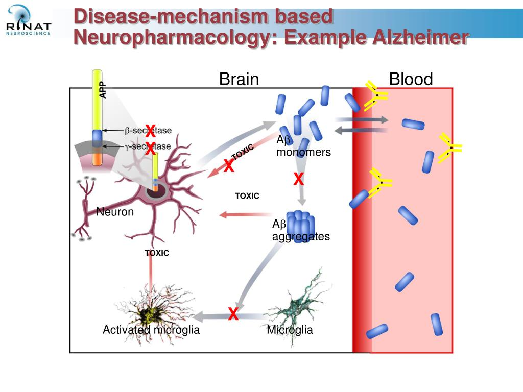 Disease-mechanism based Neuropharmacology: Example Alzheimer
