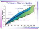 the limits of nuclear stability