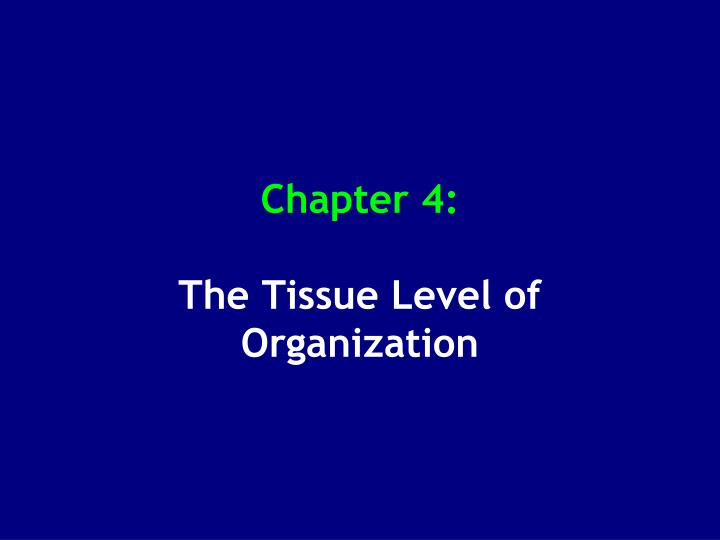 chapter 4 the tissue level of organization n.