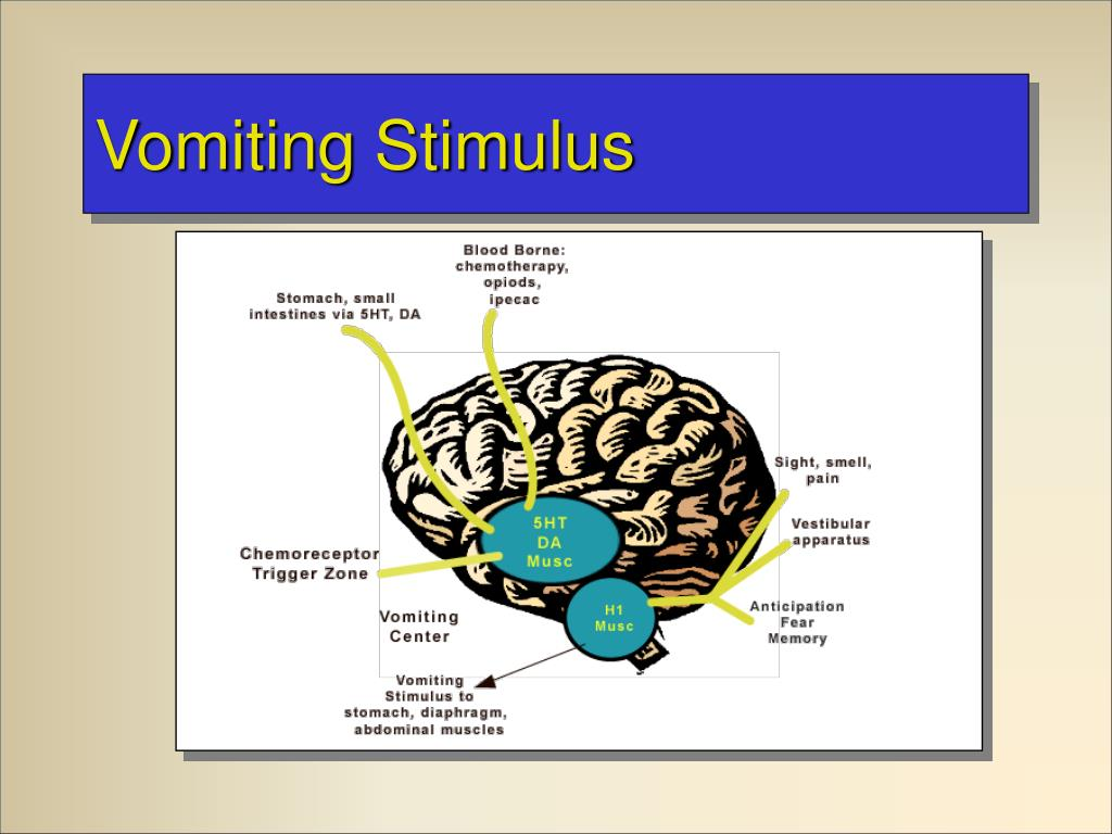 Vomiting Stimulus