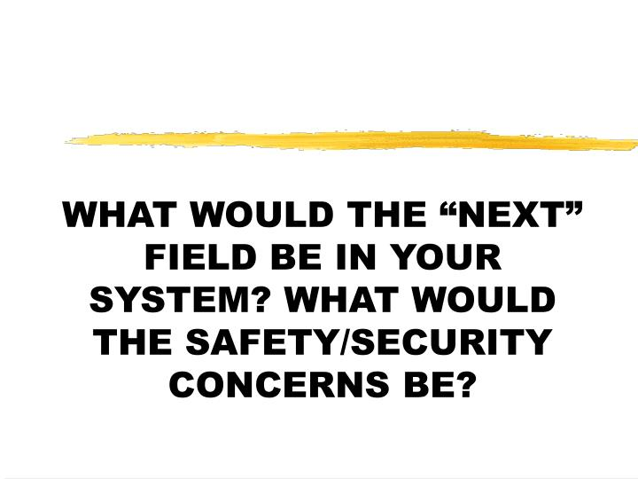 """WHAT WOULD THE """"NEXT"""" FIELD BE IN YOUR SYSTEM? WHAT WOULD THE SAFETY/SECURITY CONCERNS BE?"""
