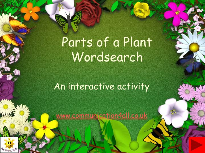 parts of a plant wordsearch n.