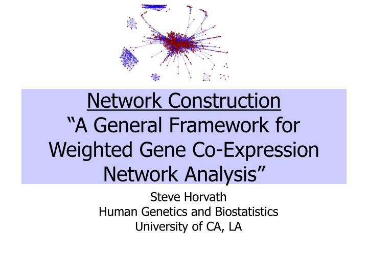 network construction a general framework for weighted gene co expression network analysis n.